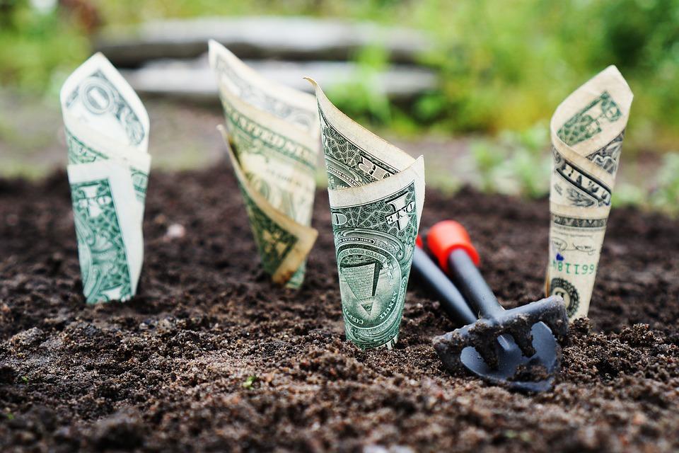Invertir en acciones con dividendos crecientes o alto dividendo ¿qué es mejor? - FIO
